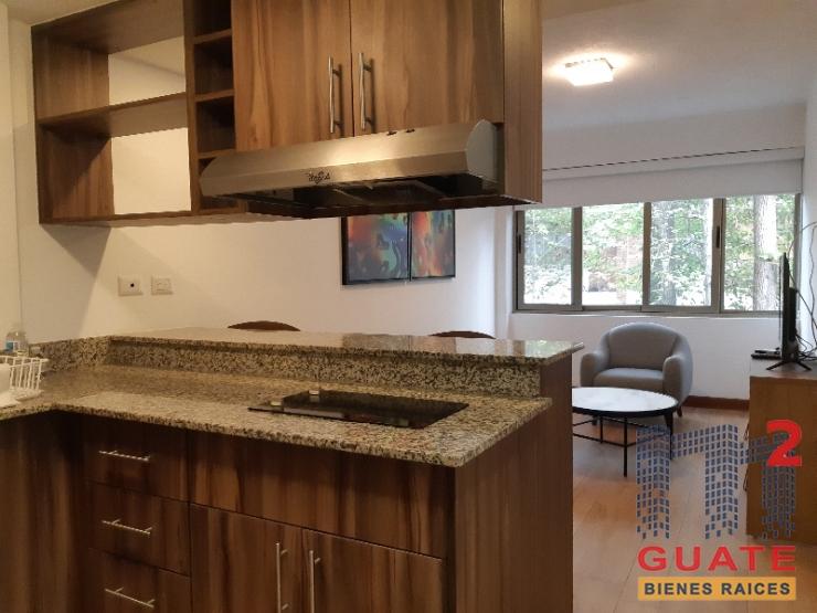 M2Guate-R7865-Apartamento-en-Renta-Guatemala-Zona-14